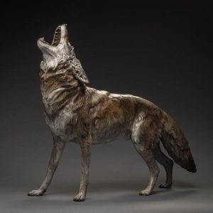 Song Dog